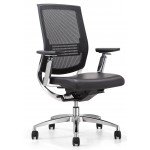 Ergonomic Chairs