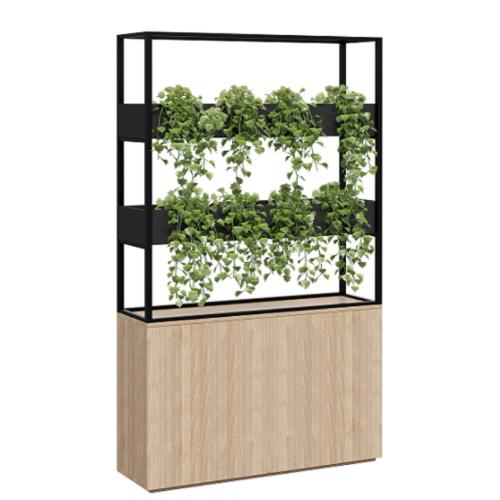 Cafe Vertical Garden
