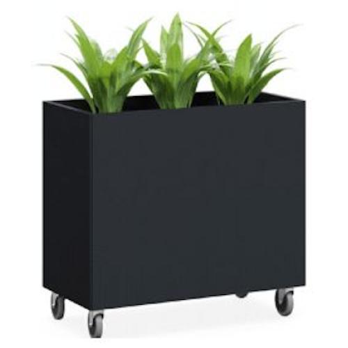Garden Box on Castors Room Divider